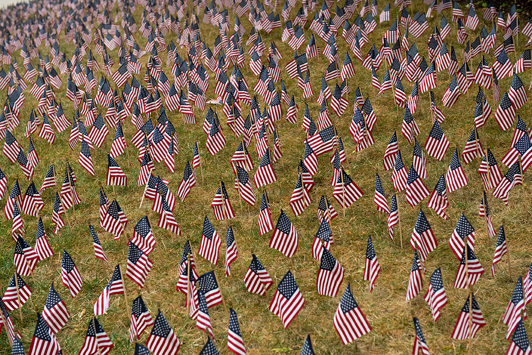 field of small American flags.