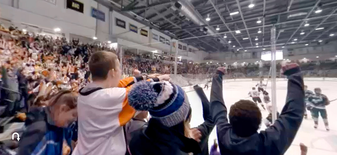 fans at hockey game.