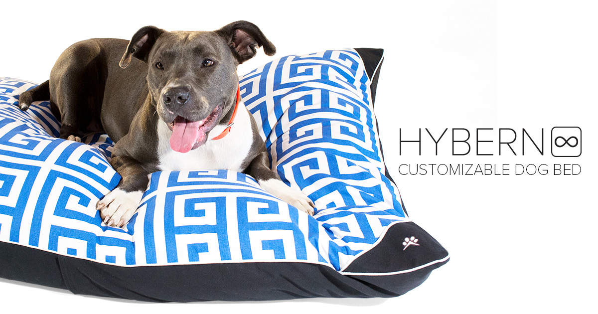 Pitbull resting on a large dog bed