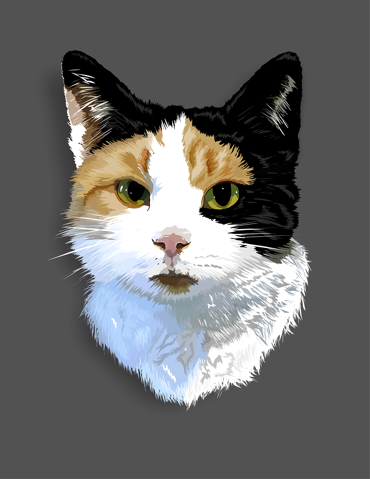 An illustration of a white, black and brown cat.