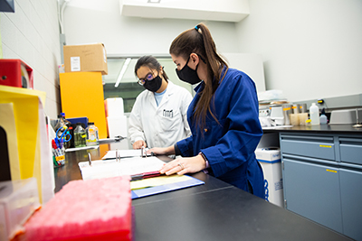 A Laboratory Technician Assistant, examining notebooks