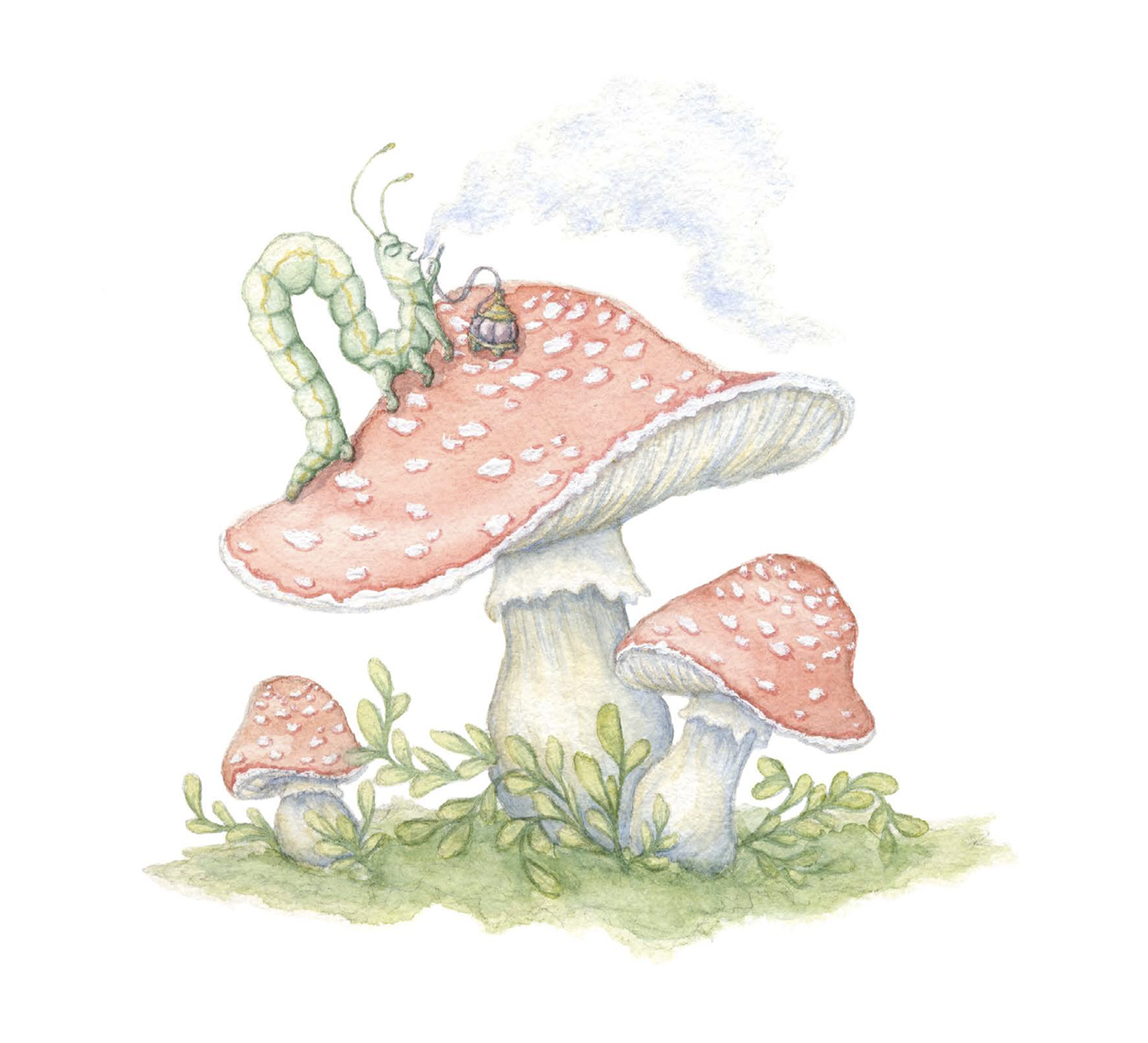 An illustration of a bug on top of a set of mushrooms.