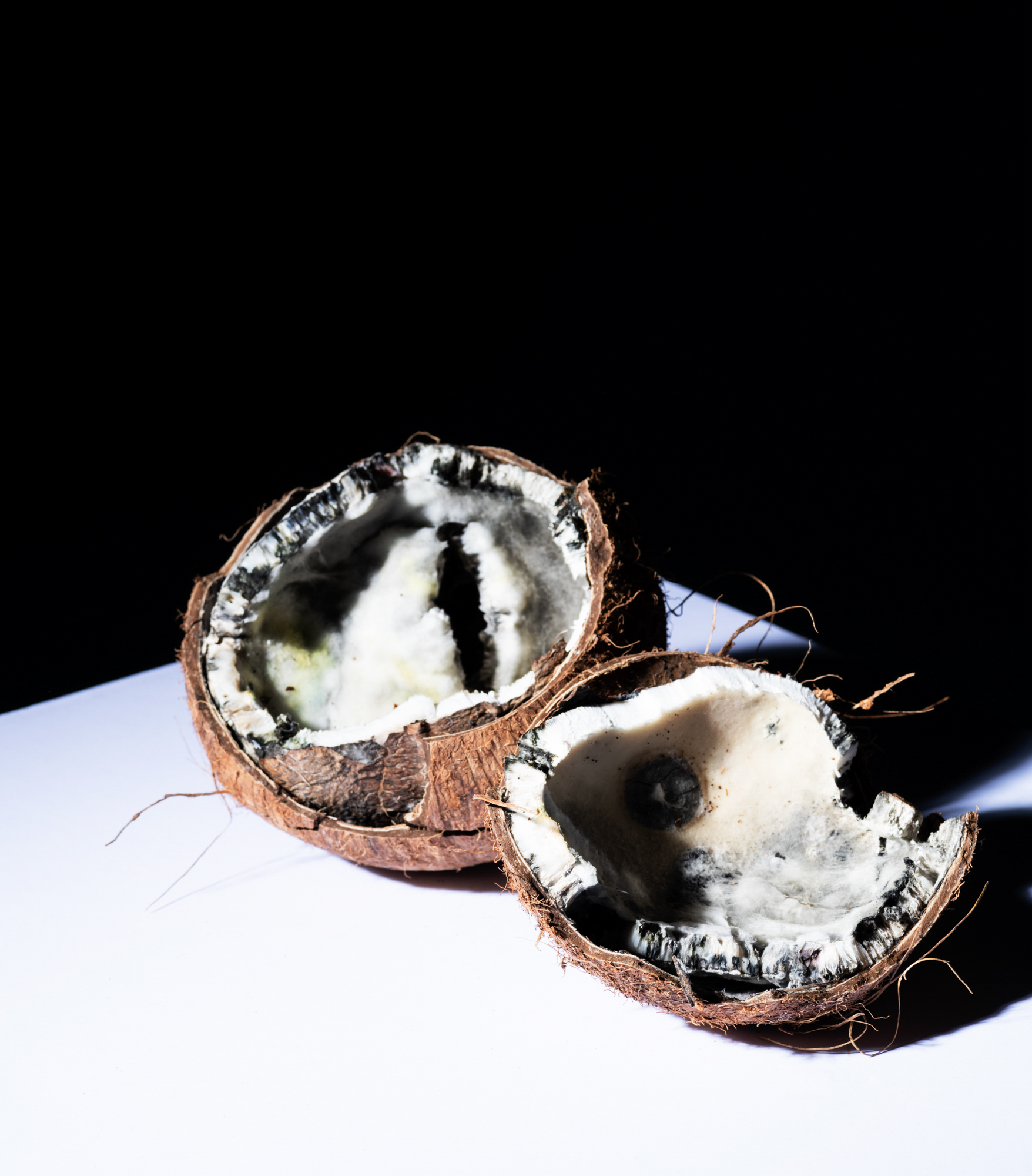 A split-open coconut.