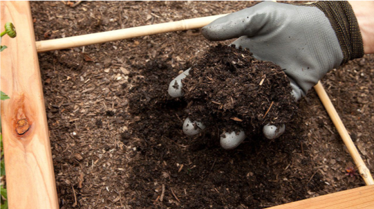 Compost - Product of composting. Photo: Grow Organic