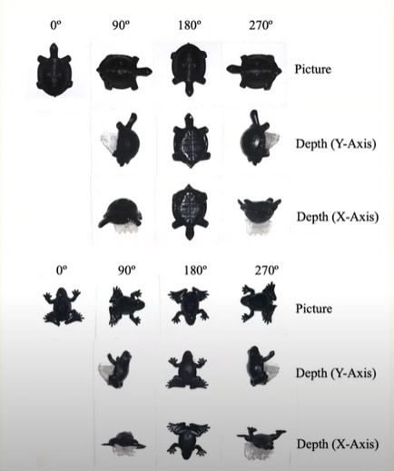 black and white chart of a figure of a turtle and a frog in different orientations.