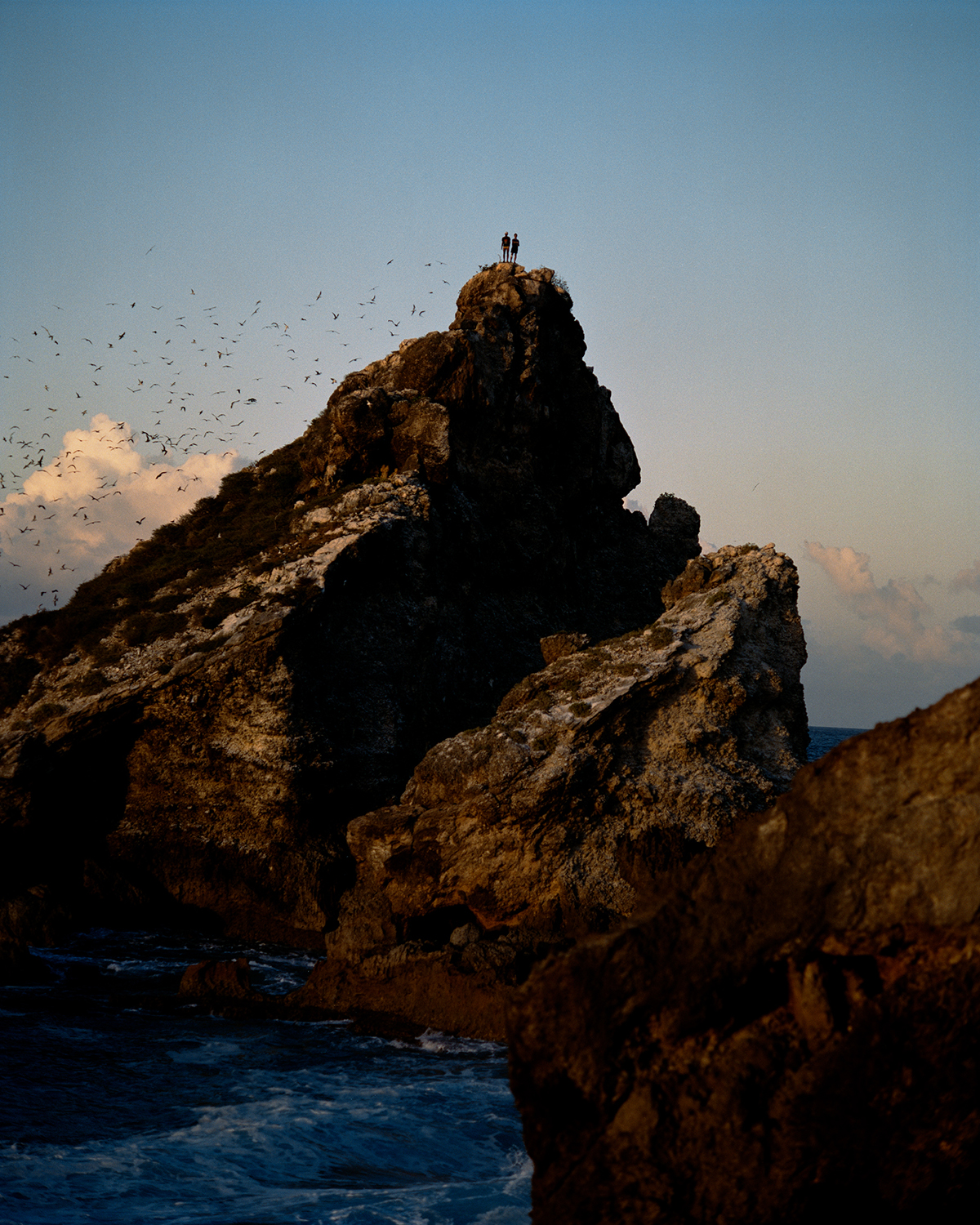 Two people stand on a mountain near water, with a throng of birds flying around.
