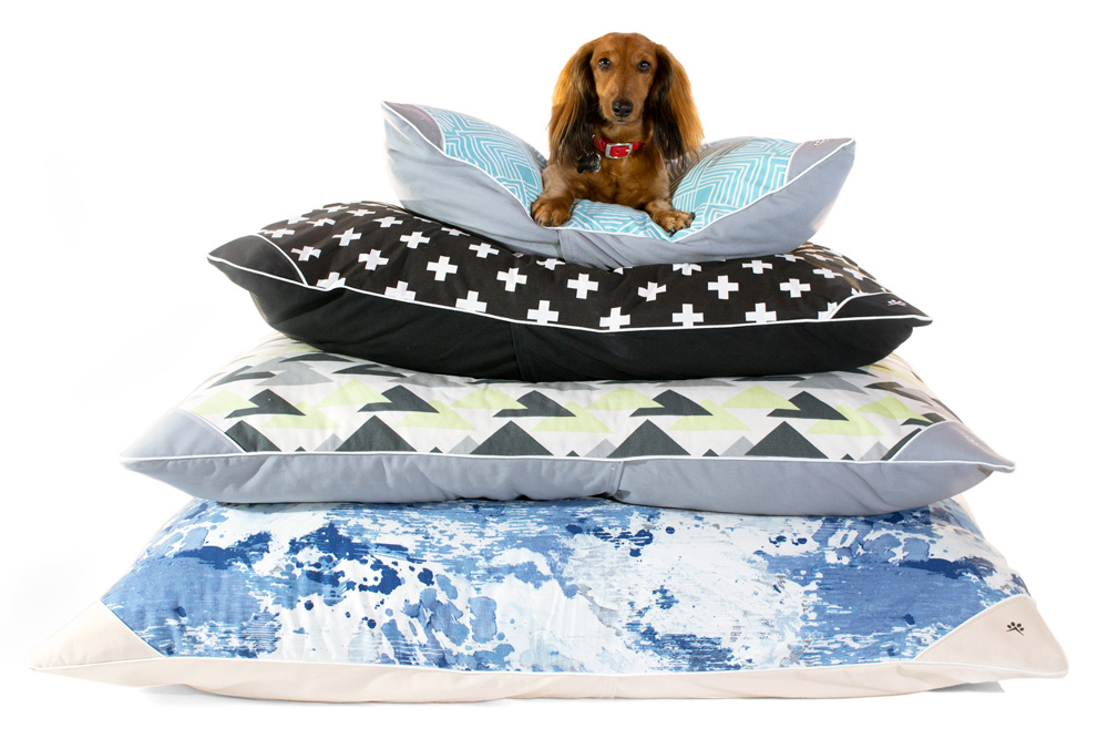 Small dog resting on a pyramid of dog pillows