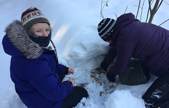 Two students dig through the snow to find mosses. One student looks up at the camera and smiles through her scarf.