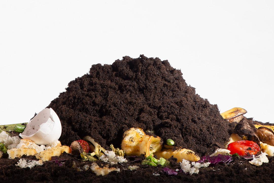 Food scraps and pile of dirt.
