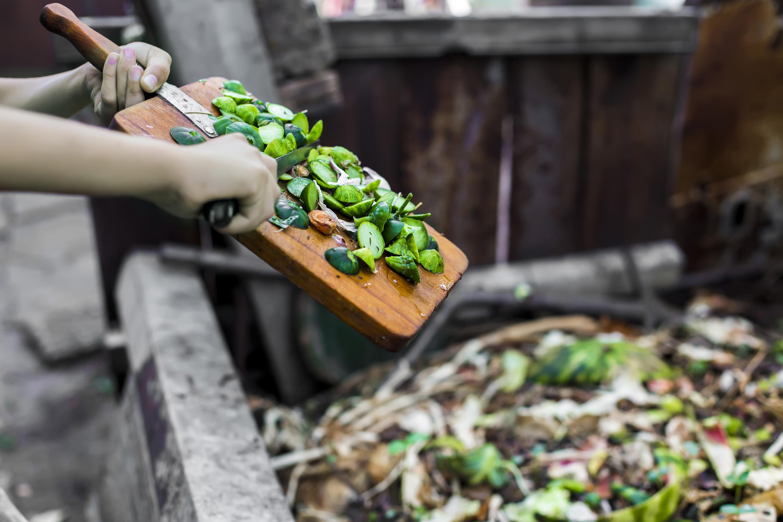 'Food waste being dumped'