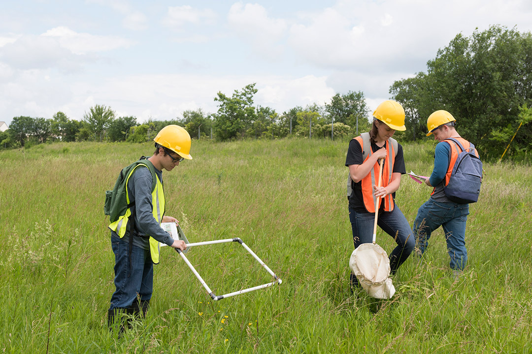 'Students wearing high-visibility vests and safety helmets survey a field.'