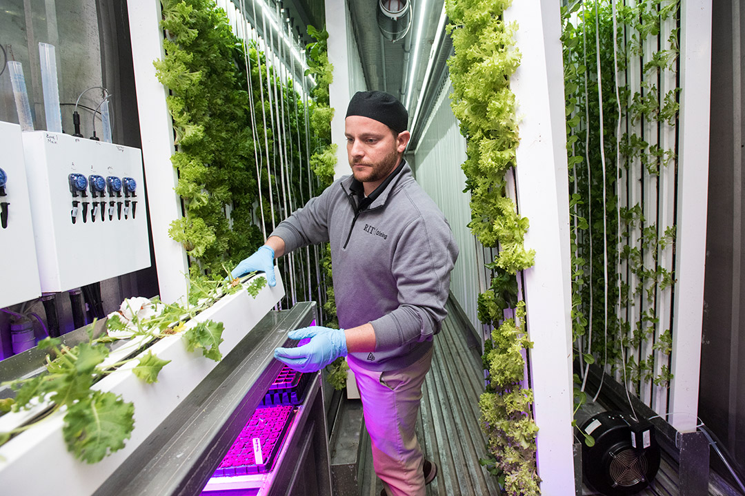 'Staff member stands in upcycled freight container being used as a hydroponic farm.'