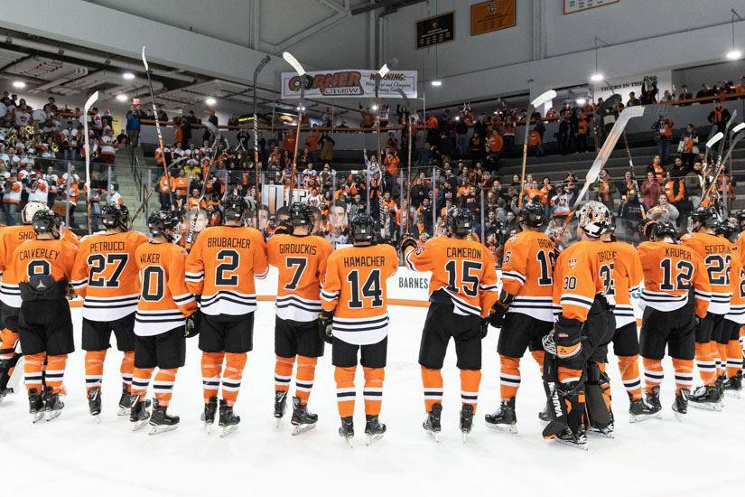 'Hockey team lines up on the ice.'