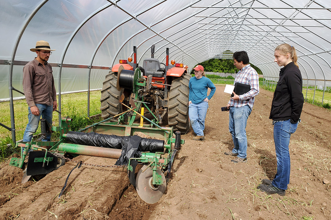 farmers and researchers in greenhouse using tractor to put down mulch barrier.