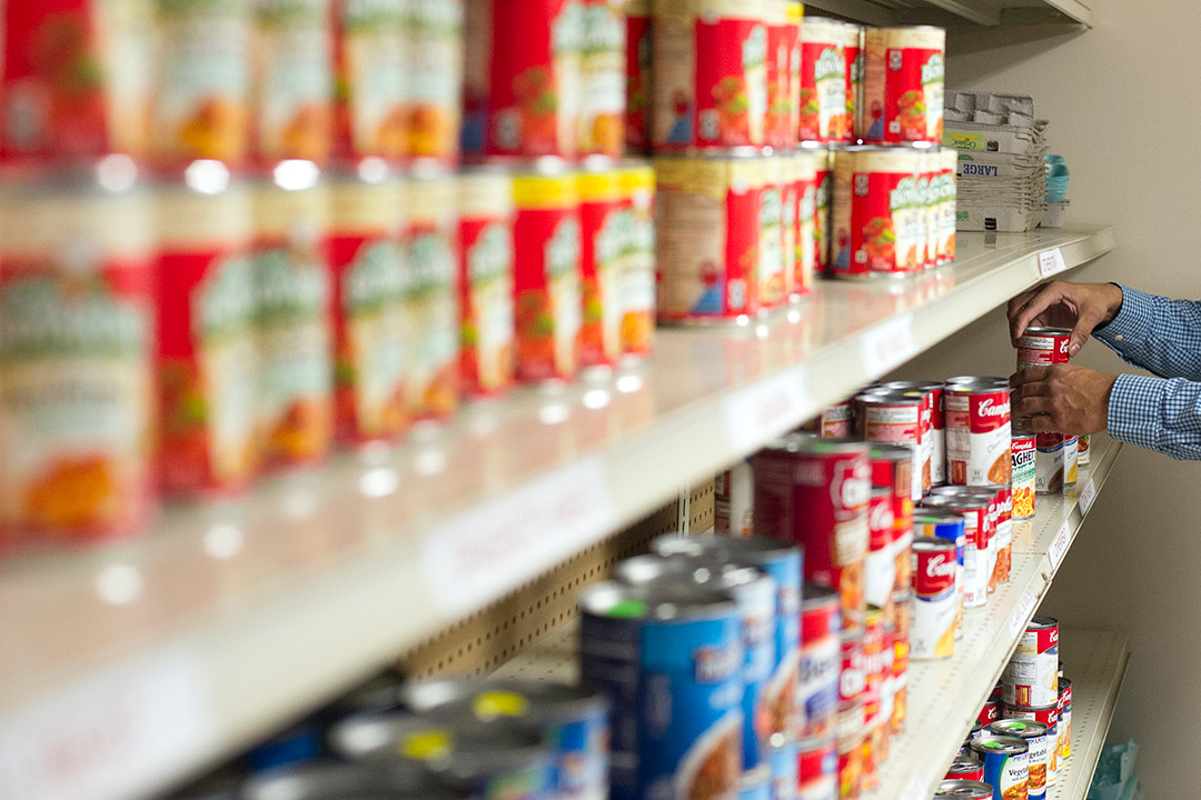 shelves with rows of canned goods.