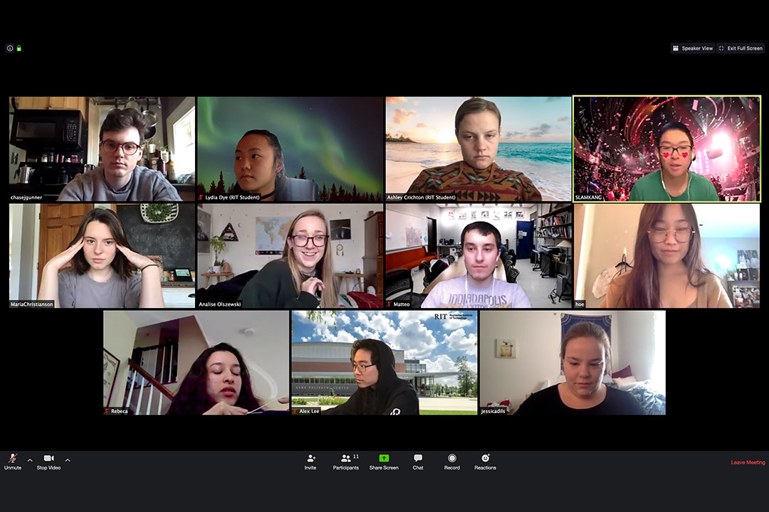 screenshot of 11 people in a Zoom virtual meeting.