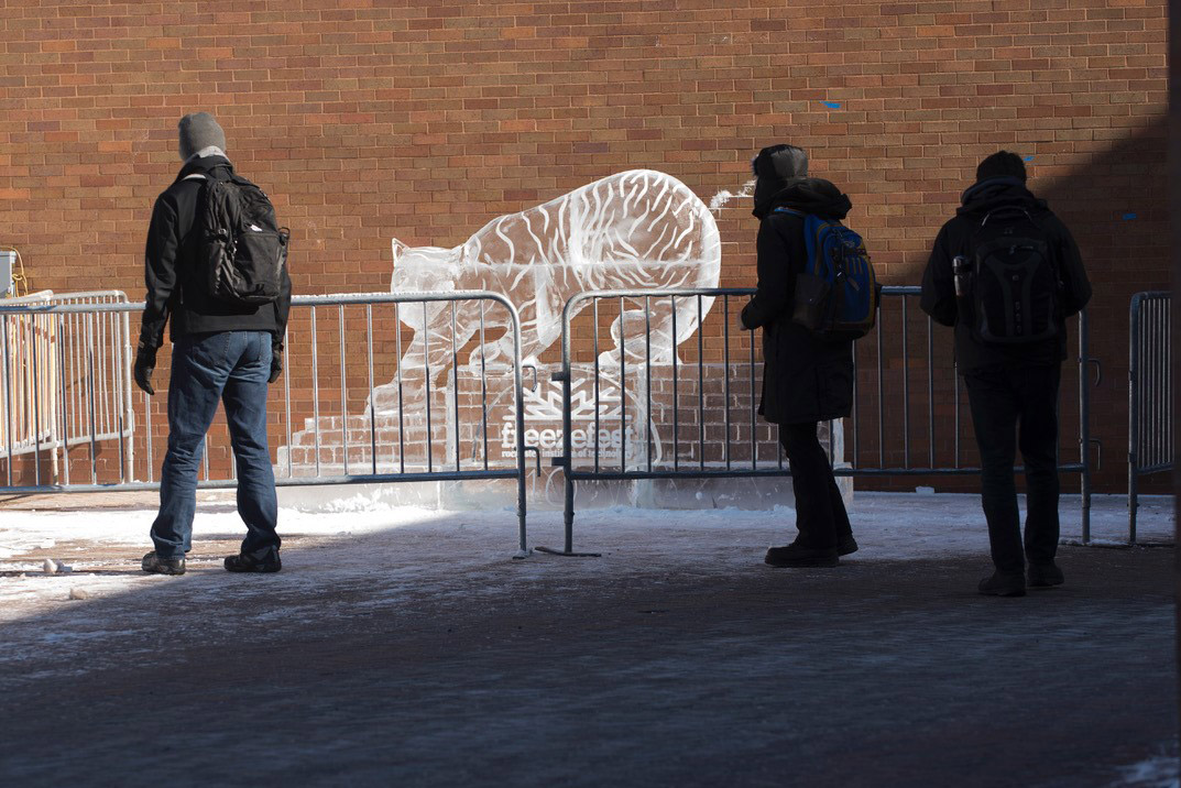 Outdoor ice skating, Performing Arts Challenge, escape rooms planned for FreezeFest '21