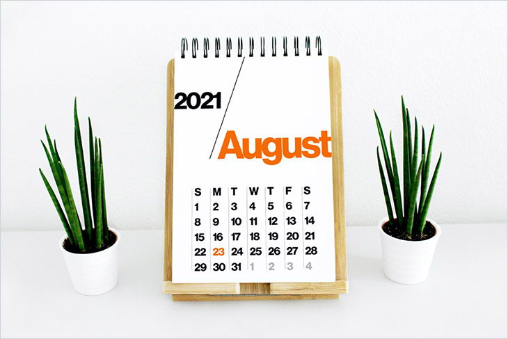 illustration showing the August 2021 calendar in between two potted plants.