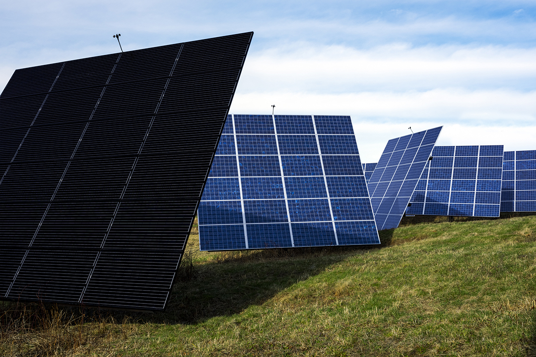 A photo of a series of large solar panels.