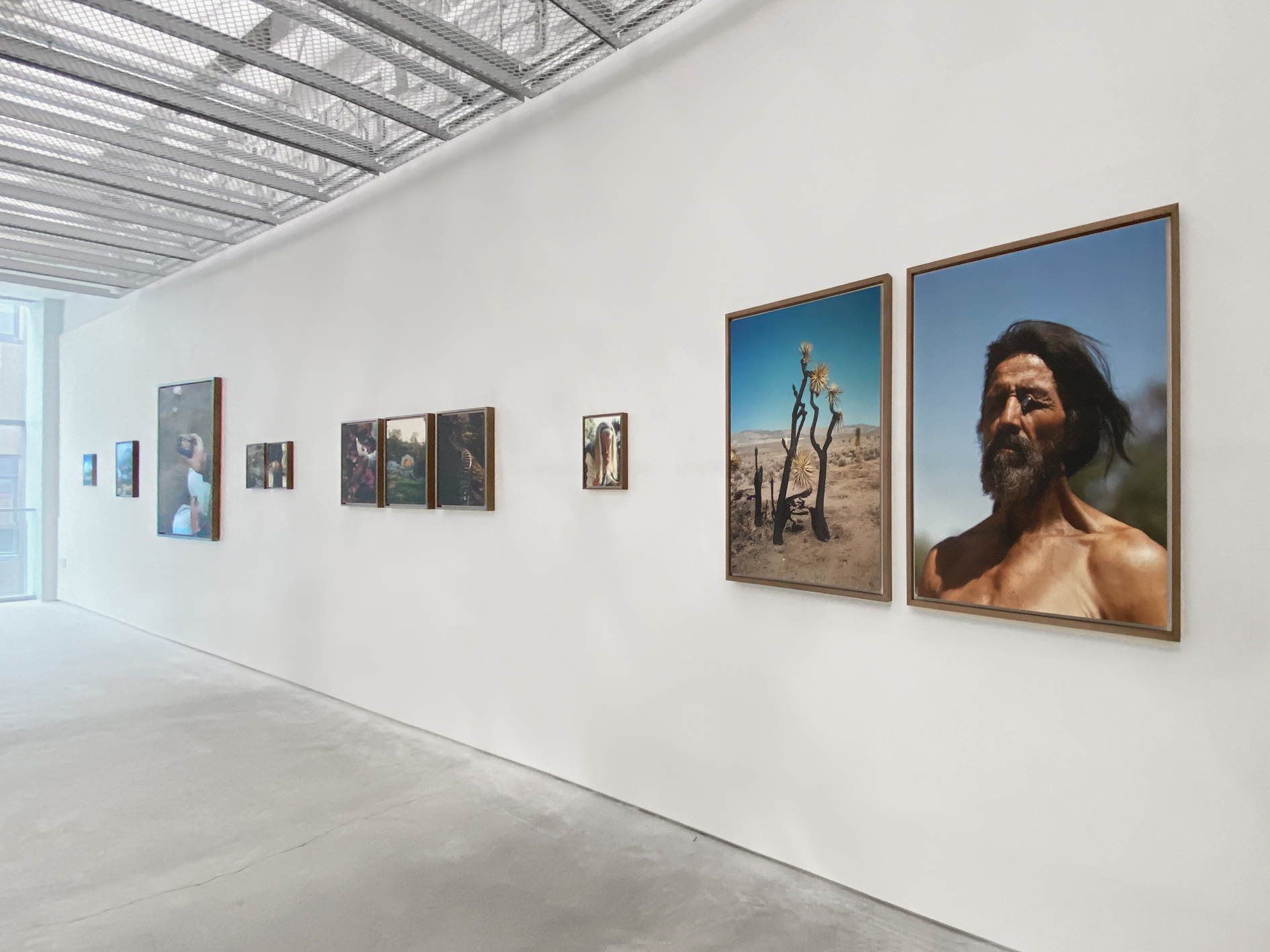 A grouping of photographs on a gallery wall by Greg Halpern.
