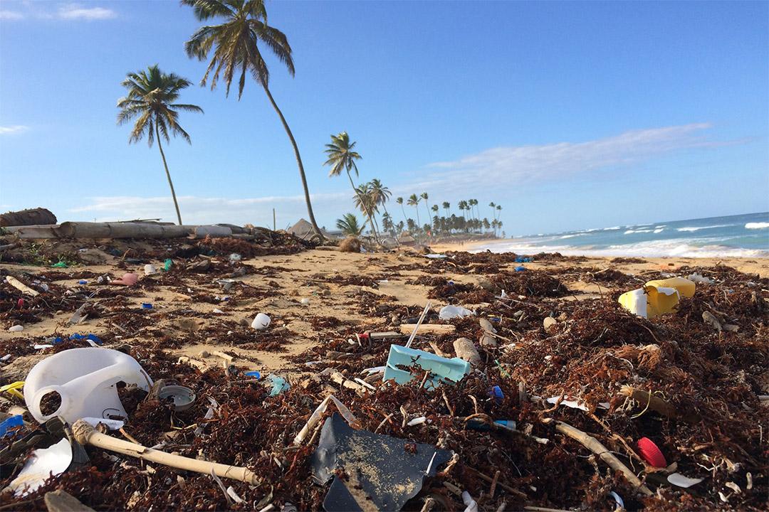 beach littered with plastic debris.