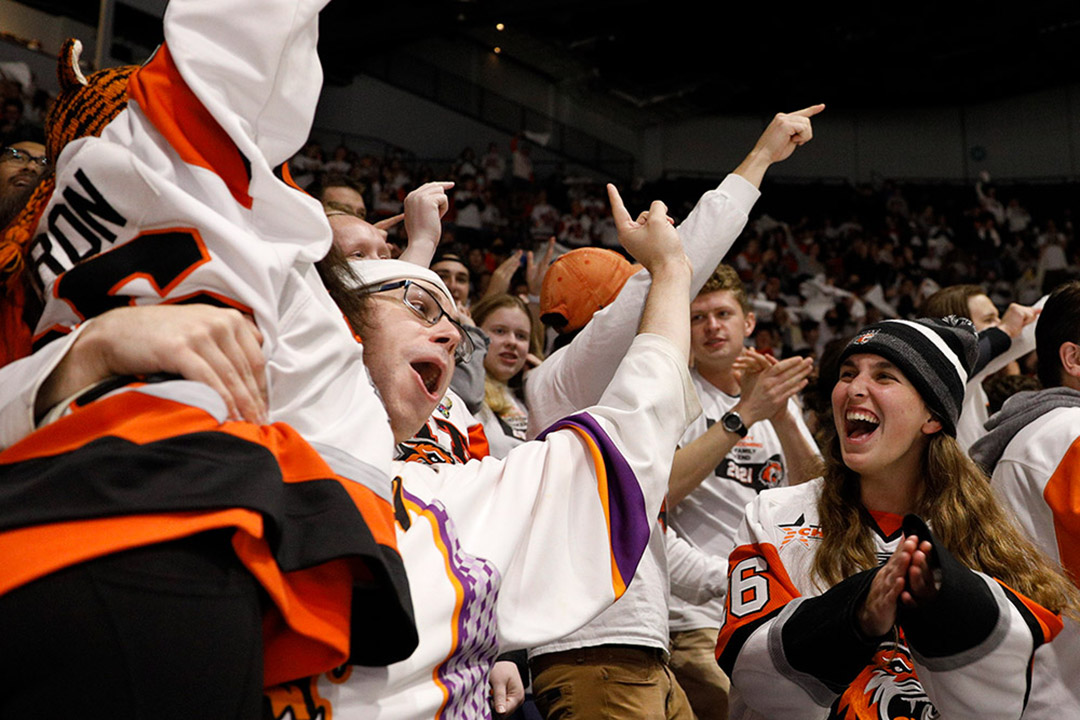 hockey fans cheering at a game.