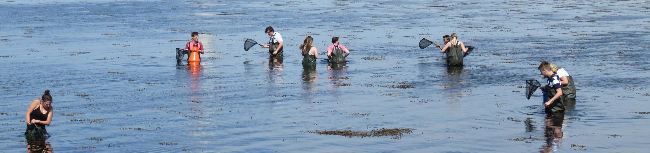 Nine students with fish nets standing in water