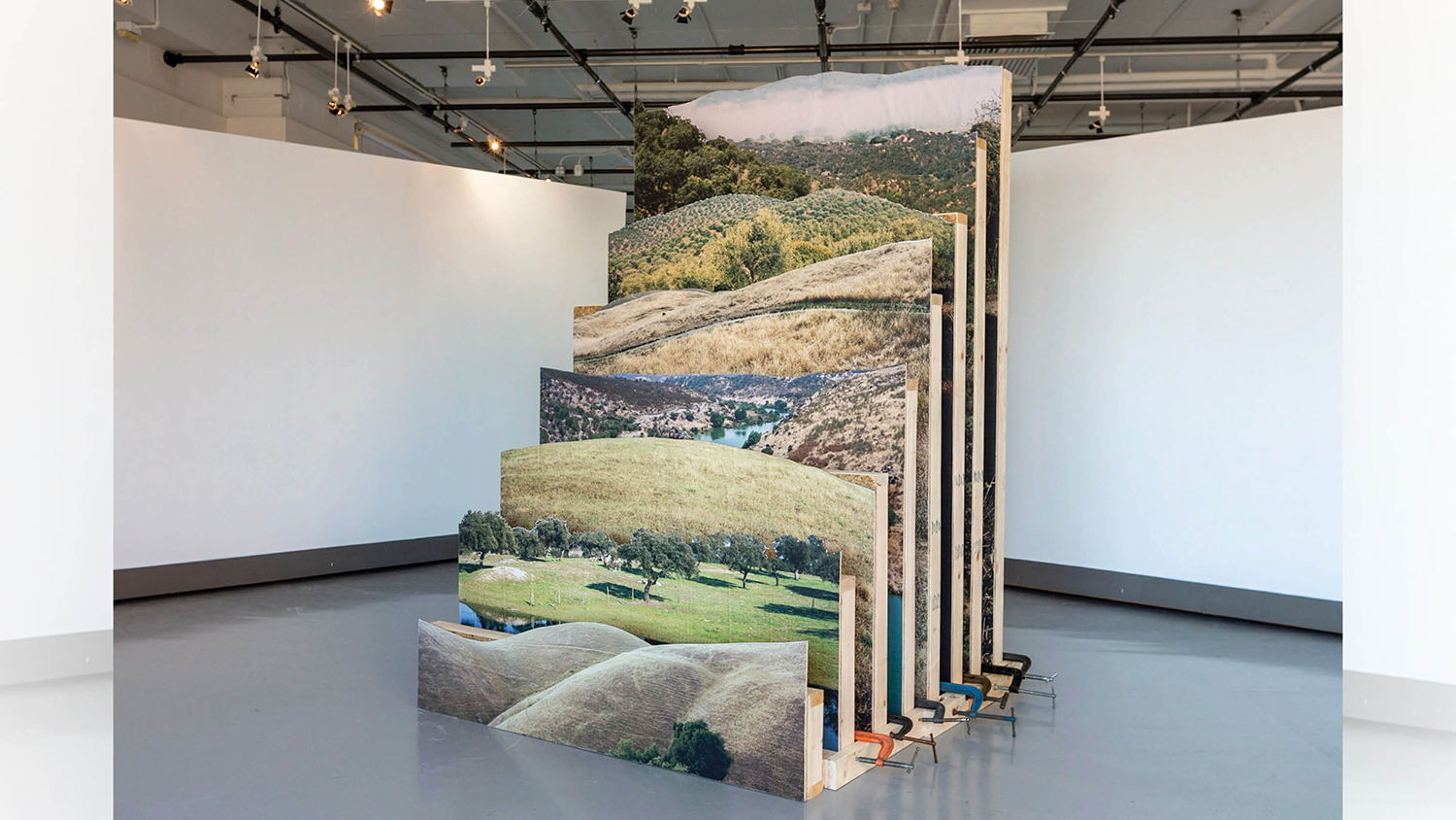 A series of photos sit on a mount in William Harris Gallery.
