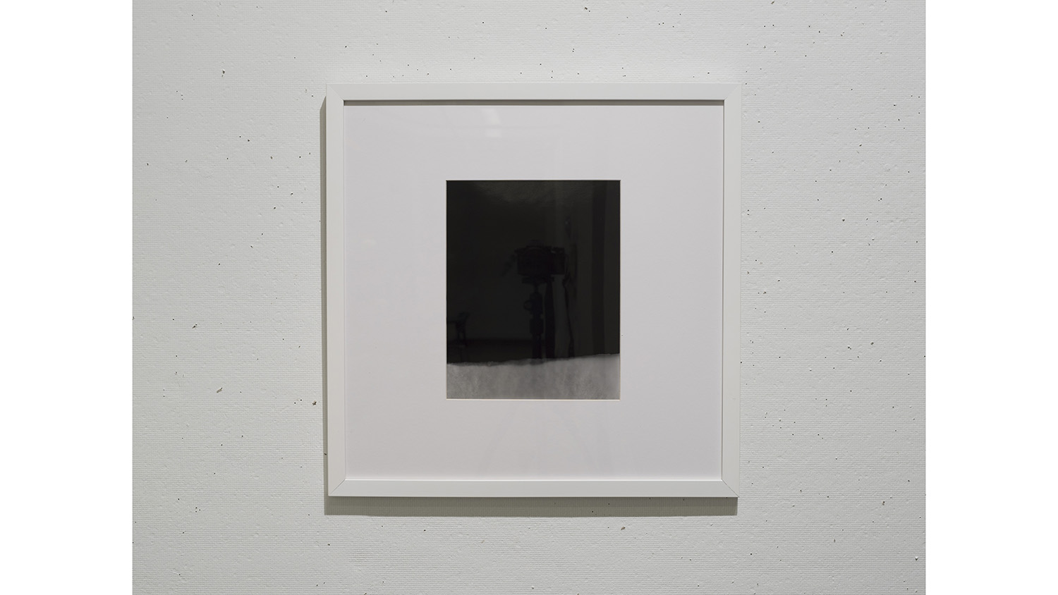 A photo of a black-and-grey photo within a frame.